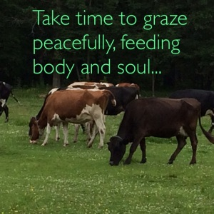 take time to graze