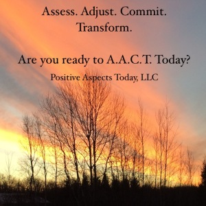 Assess Adjust Commit Transform