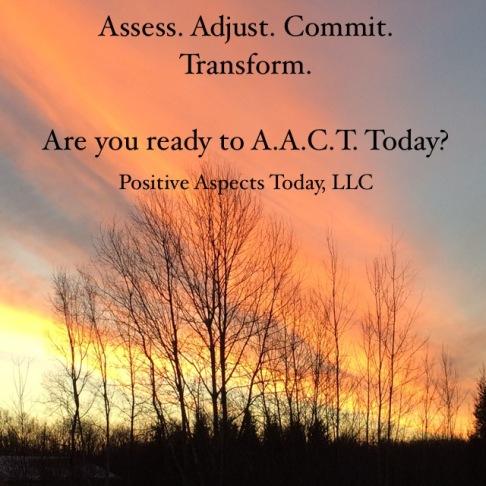 Assess Adjust Commit Transform